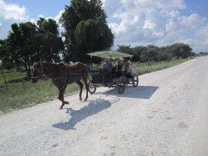 Etape 28: Belize City - Lamanai, dernière étape 001-belize-city-lamanai-21-12-2012-300x225