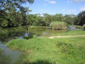 Etape 26: Flores - San Ignacio 002-flores-san-ignacio-19-12-2012-300x225